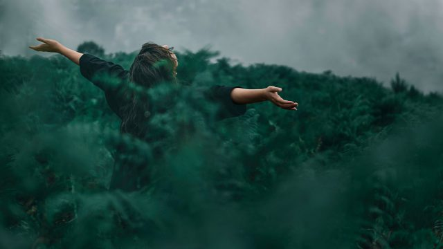 Teardrops bring forth freedom | Poëzie